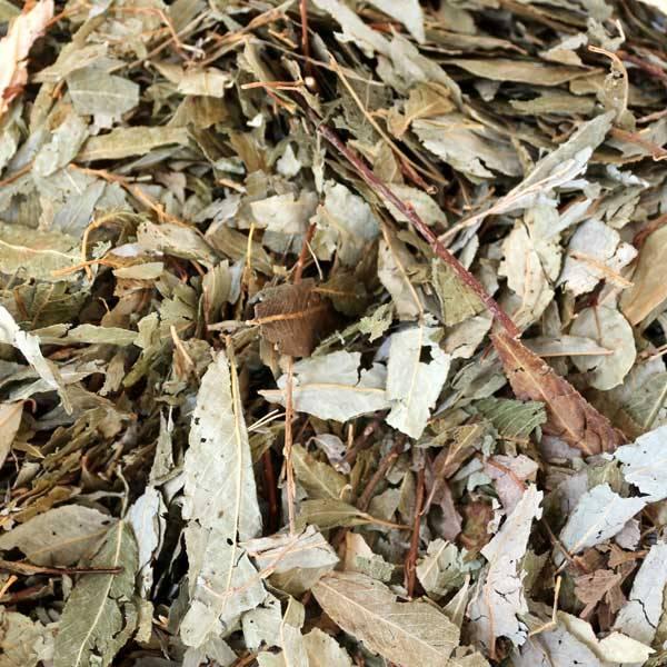 Weidenblätter ohne Verpackung