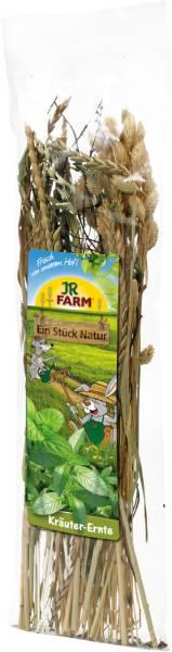 JR Farm Kräuter-Ernte in Verpackung