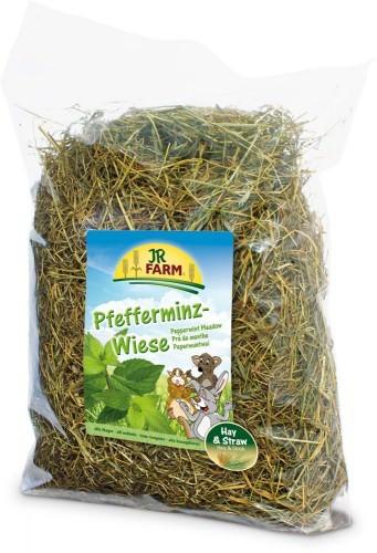 JR Farm Pfefferminz-Wiese mit Verpackung