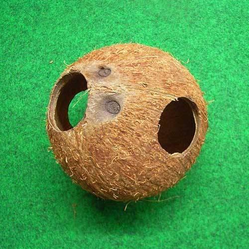 Kokoshöhle ganz