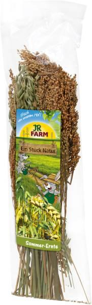 JR Farm Sommer-Ernte in Verpackung